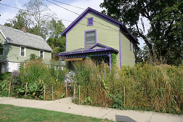 Karen Sharp's house in the Water Hill neighborhood of Ann Arbor, Mich., filled with native vegetation. (Photo by Rebecca Kessler)