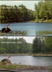 Before and after: in a decade, Little Rock Lake's water levels dropped more than 1.5 meters. Courtesy: Jereme Gaeta