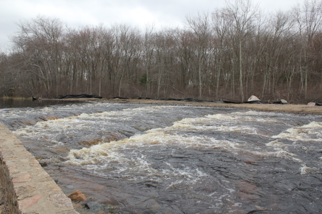 "A new ""nature-like"" fish passage on Rhode Island's Pawcatuck River that has been carefully designed to accommodate the particular swimming capabilities and behavioral quirks of river herring and shad. The new passageway enables migratory fish to move around the Kenyon Mill Dam. However, three dams downstream are still blocking fish passage. (Photo credit: Rebecca Kessler)"